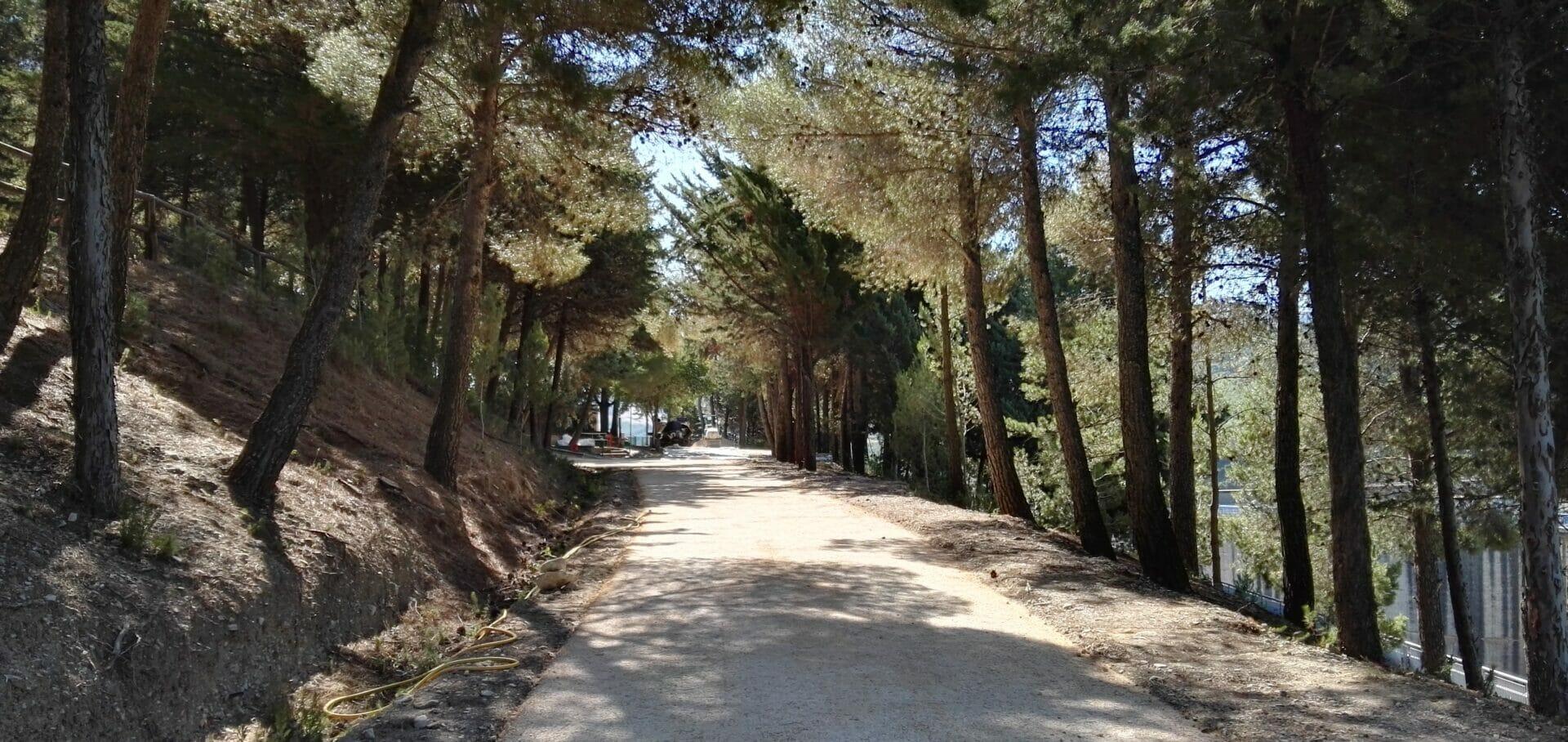 Terra Solida_linea nature_dioga Occhito